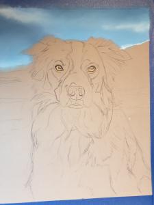 Dog Portrait of Marmo, outline sketch