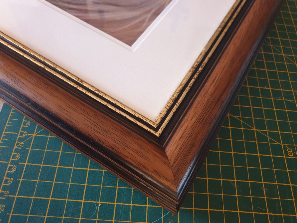 View of the double mount and frame used for Ike's pet portrait
