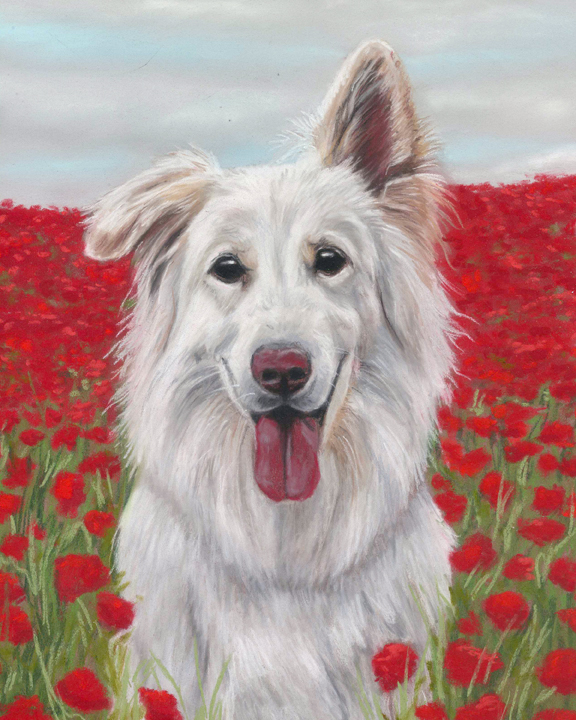 White GSD dog painting sitting in a poppy field with slightly cloudy sky. Painted in pastels