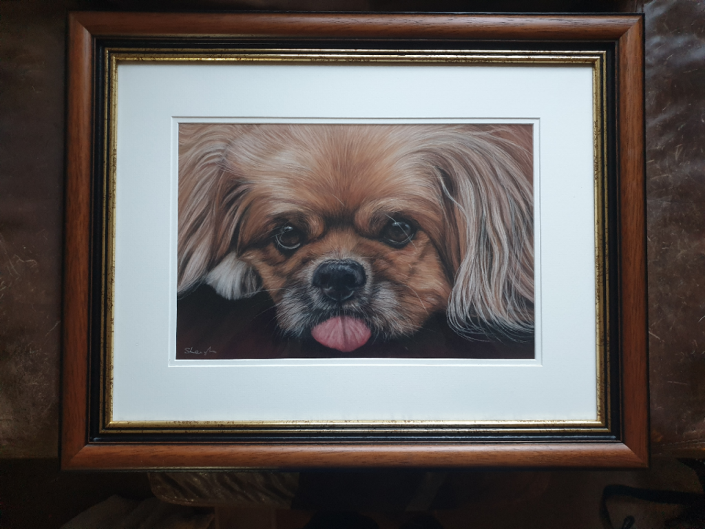 Ike's framed dog portrait