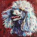poodle dog portrait painting in acrylics on deep edge canvas . *x8 inches with deep red background