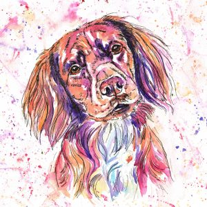 Digby, dog portait in Jolly Splashes watercolour style with pinks oranges and purples