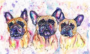 Triple dog portrait of three French Bulldogs in my Jolly Splashes style
