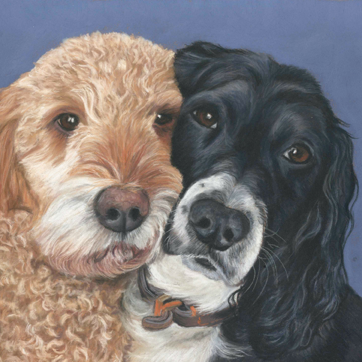 gorgeoys double dog portrait, two dogs snuggling up together in pastels