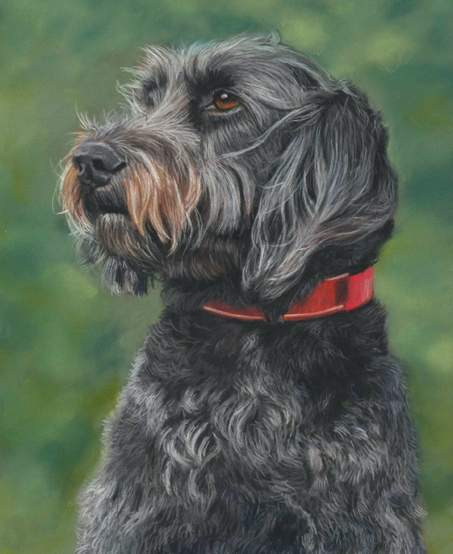 Poppy pet portrait with green background painted in pastels