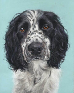 Murphy pastel dog portrait