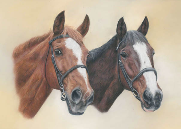 Double horse portrait in pastels with a yellow and cream background