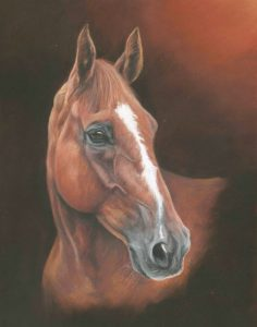 Chesnut horse portrait in pastels