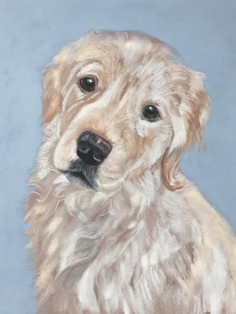 Charlie's pet portraits nearly finished with the main details til to go down
