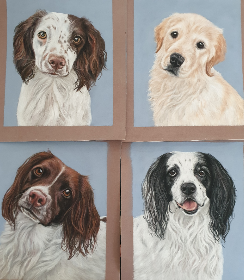 Four dog portraits all together before packing up and shipping to my client