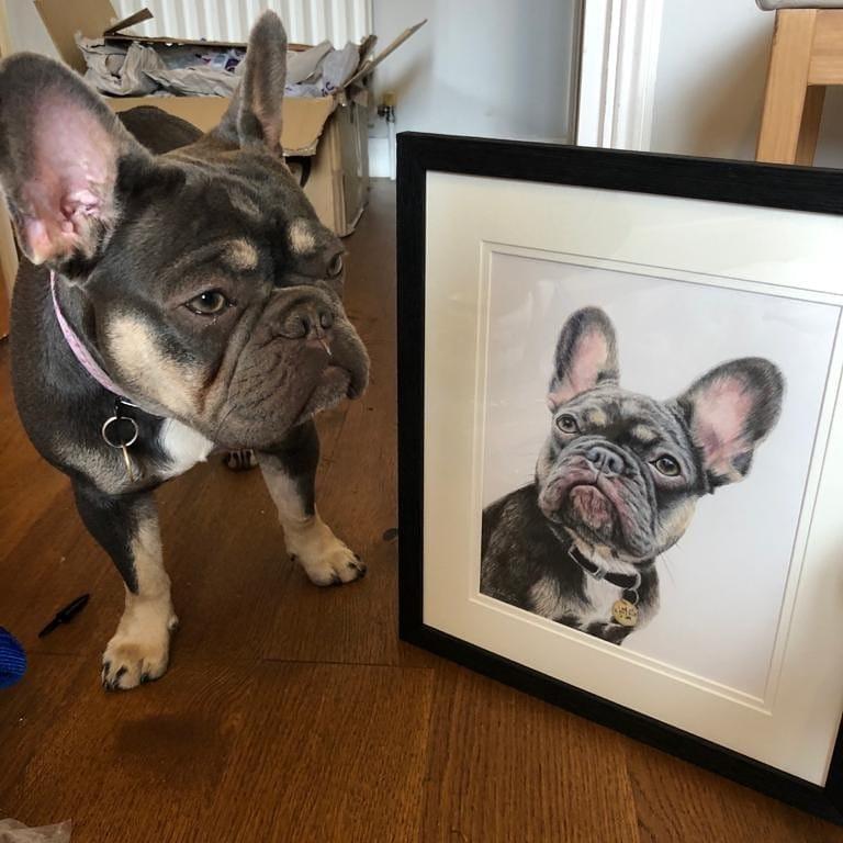 Scotch admires his pet portrait