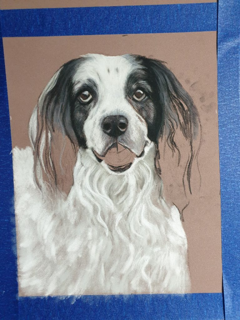 First stages of Toby's pastel pet portrait