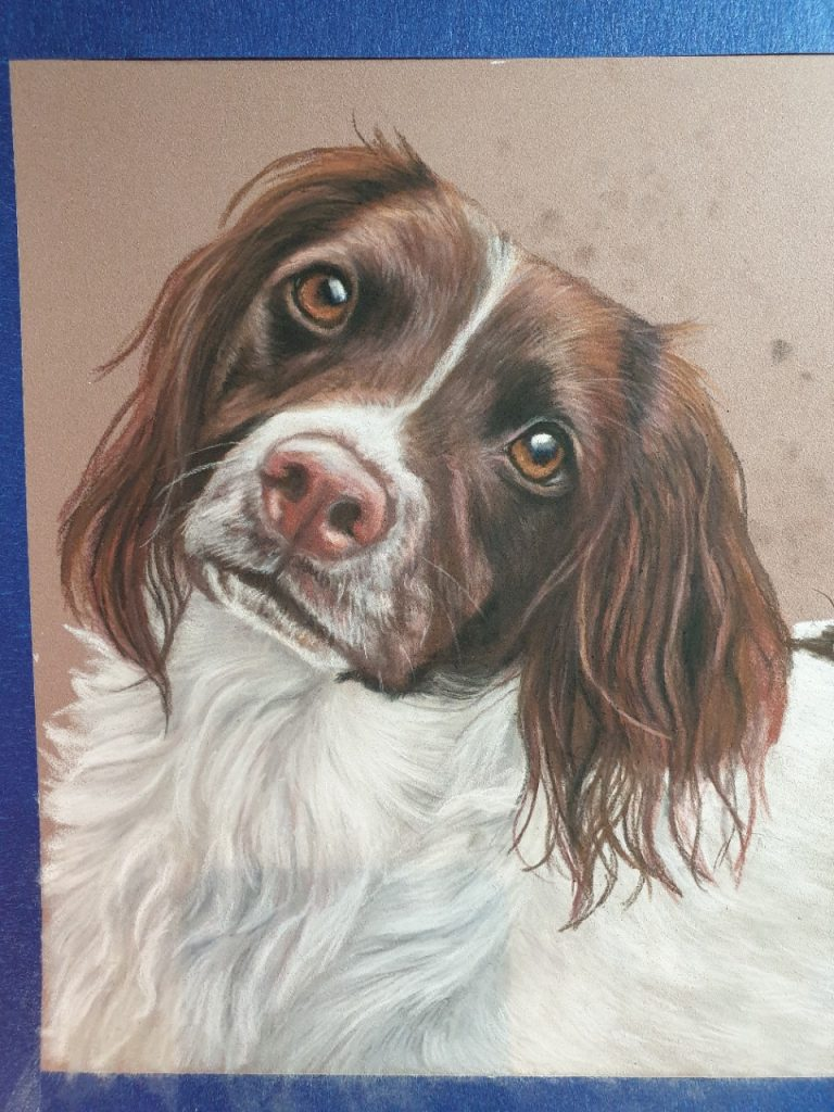 Holly's chest filled in and her pet painting pretty much finished except fot the background
