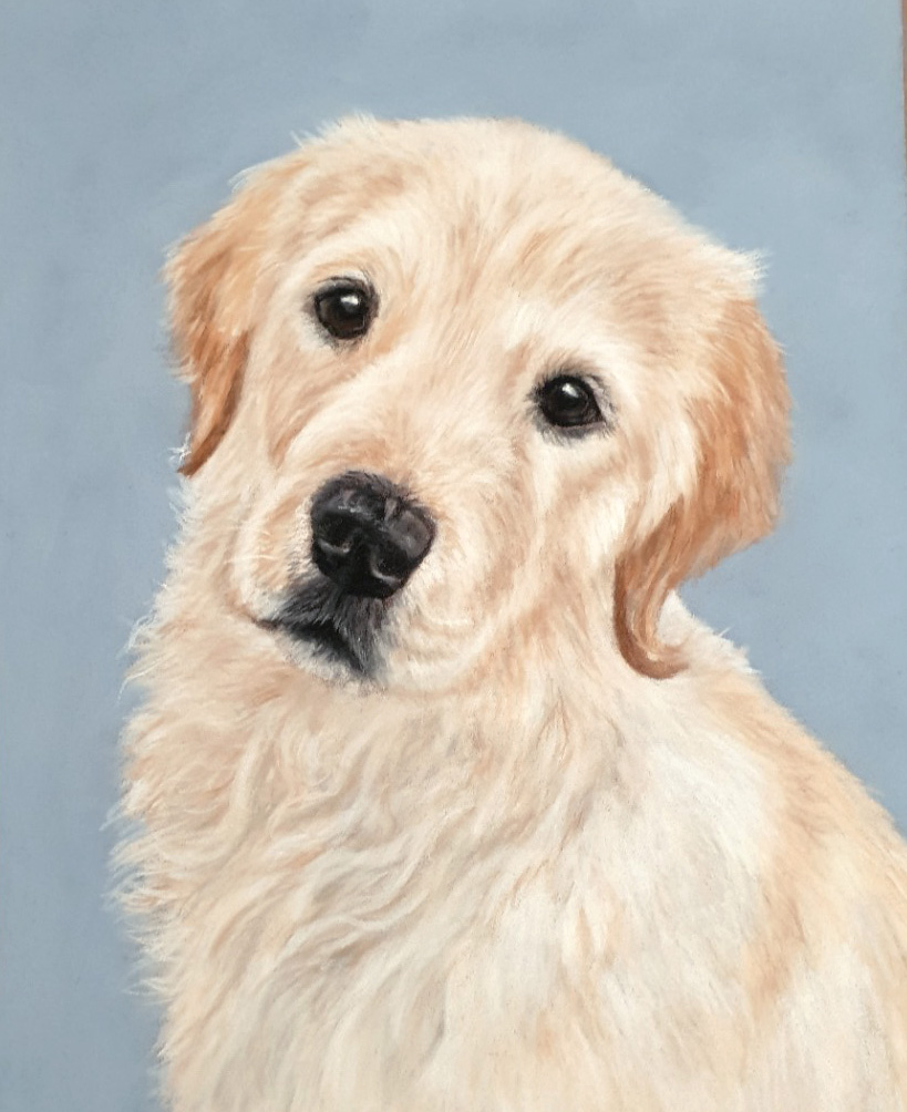 Charlie's finished pastel pet portrait
