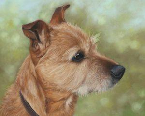 Florrie, pastel pet portrait of a terrier