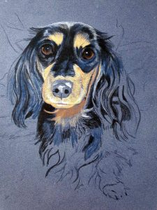 Halle, dog portraits in pastel