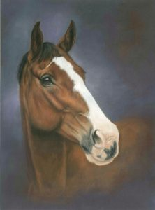 Jemima, horse portrait in pastels