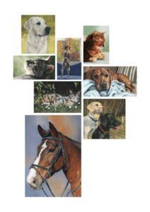 Sarahs Pet Portraits