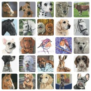 2020 pet portraits
