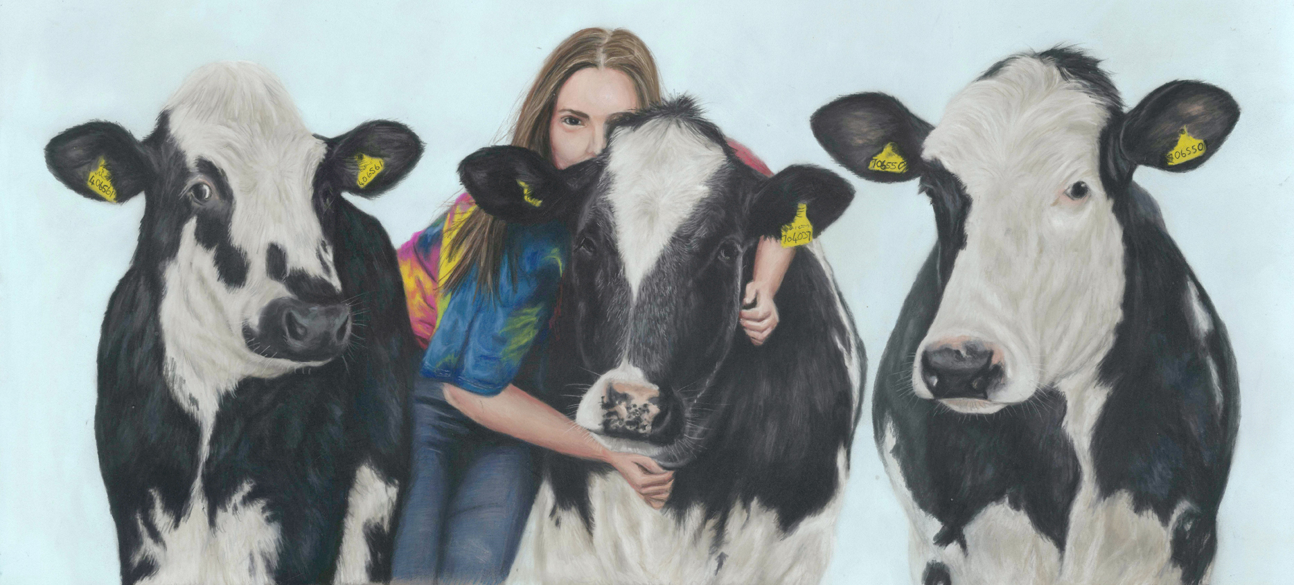 Pastel portrait of three cows