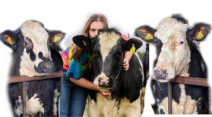 Mock for latest pet portraits commission