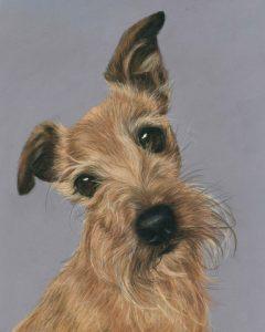 Dog pet portraits, terrier painting