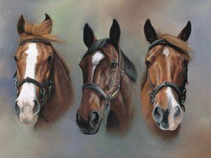 Triple horse portrait